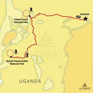 5-DAY-BWINDI-KIBALE-SAFARI-30_watermark