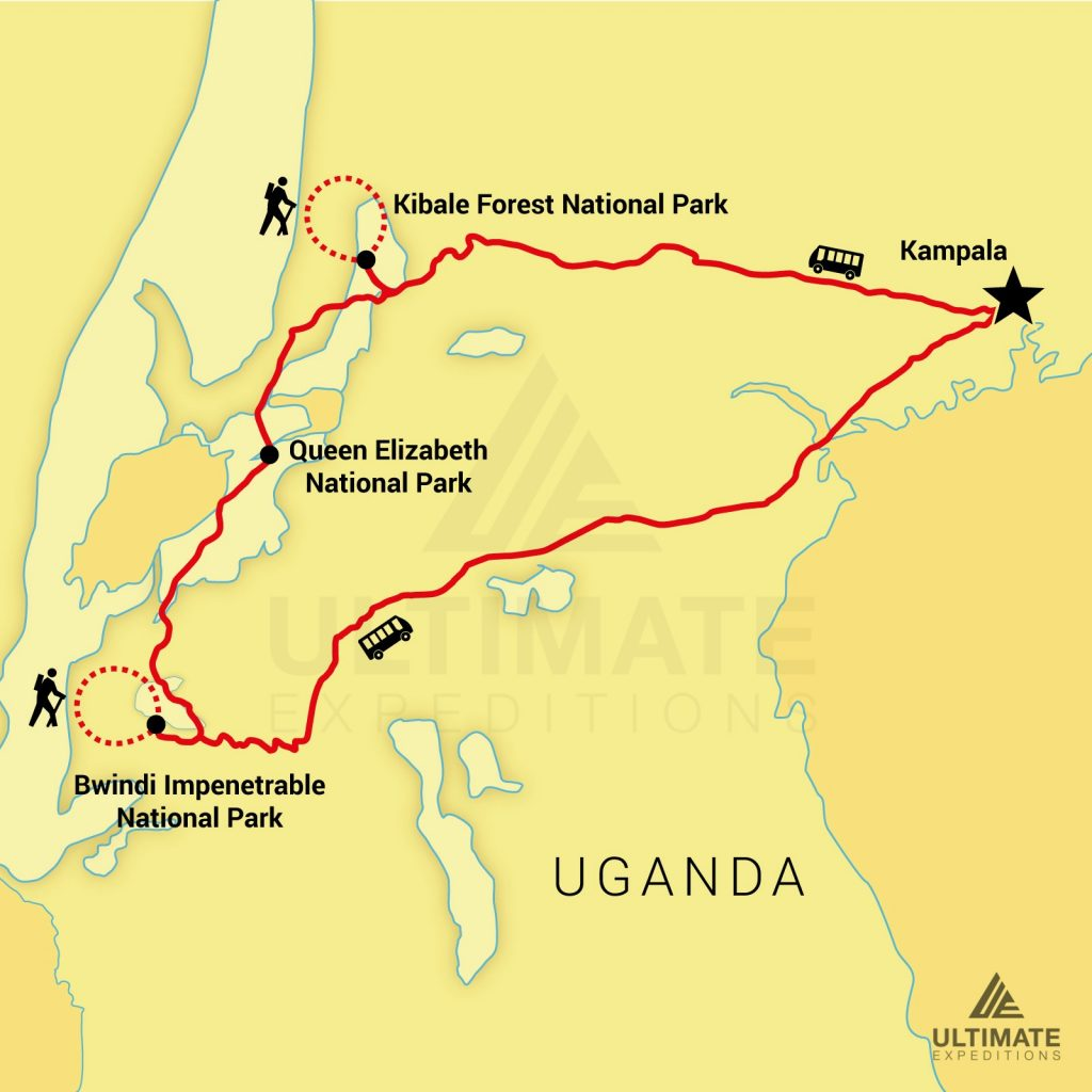 7day-uganda-safari-watermark_34