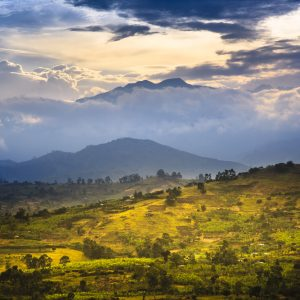 Uganda's Rwenzori Mountains National Park