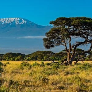 What is the Weather on Kilimanjaro?