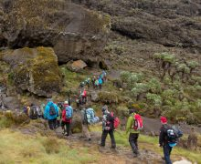 Climbing Mount Kilimanjaro: The Gear You Need to Carry Your Day Pack