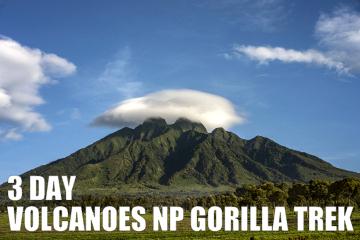 3DAYvolcanoesNPgorillatrek