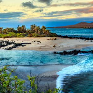 Best of the Galapagos: A Pilgrimage to Nature