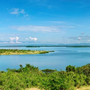 7 Day Uganda Safari: What's it Like?